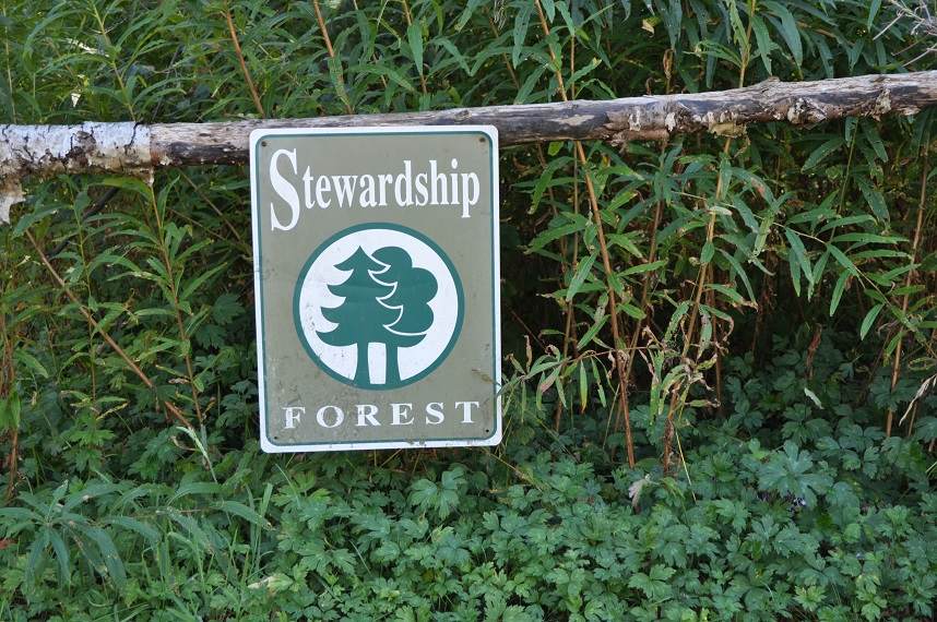 Stewardship Forest sign